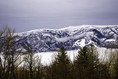 Snow Covered Mountains in Ogden Canyon, Utah Stock Images