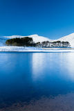 Snow covered mountains reflected in a semi frozen lake. Bright snow covered mountains reflected in the waters of a semi-frozen lake and trees royalty free stock photography