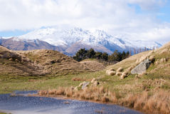 Snow covered mountains at Routeburn Track Stock Image