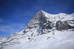 Snow covered mountains. In Switzerland during winter, from below Royalty Free Stock Photos