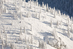 Snow Covered Mountainside Royalty Free Stock Photography