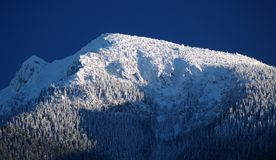 Snow covered Mt. Choc. Snow covered mountain peak of Mt. Choc, Slovakia in winter stock image