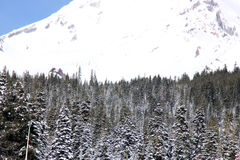 Snow covered Mt. Shasta Peak with human face Stock Image