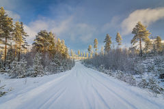 Snow covered norwegian road and forest Finnskogen Stock Images