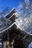 Snow Covered Pagoda Tranquil Scene Concept Royalty Free Stock Images