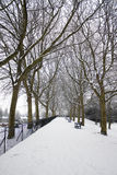Snow-covered Park Stock Photo