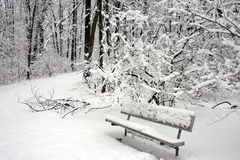A snow covered park bench Stock Photos
