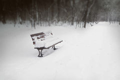 Snow Covered Park Bench Royalty Free Stock Images