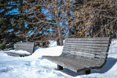 Snow Covered Park Benches. A familiar winter scene of snow covered benches stock photos