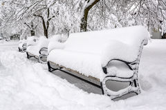 Snow Covered Park Benches Stock Photo