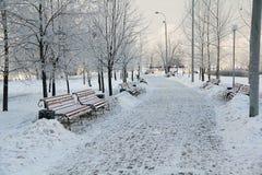 Snow-covered Park. Desert Park in the winter Stock Photo