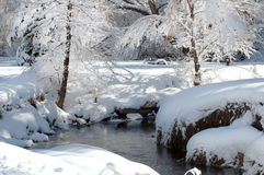 Snow covered park and stream. A small stream flows through an icy snow frosted park in colorado Stock Photography