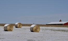 Snow Covered Pastoral Scene royalty free stock photography