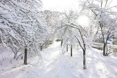 A snow-covered path, along which people walk. royalty free stock images