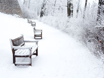 Snow-covered path in park with benches and bushes Stock Image