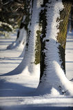 Snow covered path during winter Royalty Free Stock Photography