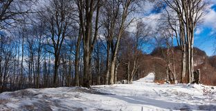 Snow covered pathh Royalty Free Stock Photography