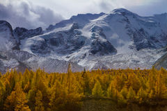 The snow-covered peak of Mt Zhara Royalty Free Stock Photos
