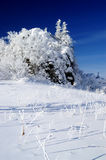 The snow-covered peaks. World of ice and snow Royalty Free Stock Photos