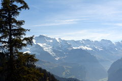 Snow-covered peaks of the Alps in Switzerland. Jungfrau. Schynige Platte Royalty Free Stock Photo