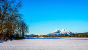 The snow covered peaks of the Golden Ears Mountain in the Fraser Valley of British Columbia, Canada Stock Photos