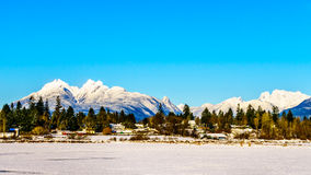 The snow covered peaks of the Golden Ears Mountain and Mount Robie Reid behind the town of Fort Langley in the Fraser Valley. Of British Columbia, Canada on a stock photo