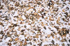 Snow-covered pebbles Stock Photography