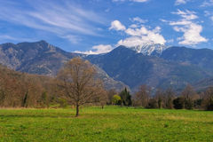 Snow covered Pic du Canigou, Pyrenees Royalty Free Stock Images