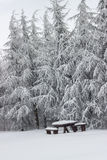 Snow covered picnic bench set with table Royalty Free Stock Images