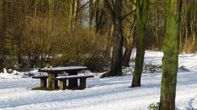 Snow Covered Picnic Table and Benches in Forest During Winter. A picnic table and benches covered in snow during the winter in the Netherlands Stock Photos
