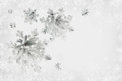 Snow-covered pine branches and snowflakes Royalty Free Stock Photo