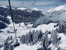 Snow Covered Pine Trees Below Running Cable Car during Day Stock Photo