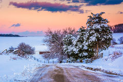 Snow covered pine trees and fields along a dirt road in rural Yo Stock Photos