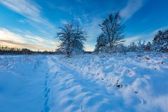 Snow covered polish landscape with rural road near fields and forest. Stock Images