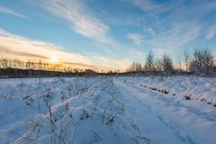 Snow covered polish landscape with rural road near fields and forest. Stock Photos