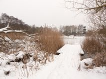 Snow covered pontoon near lake with reeds frozen winter day Royalty Free Stock Photography