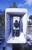 Snow covered public telephone, AZ Stock Photo