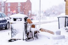 Snow covered public waste bin next to UK road.  Stock Image