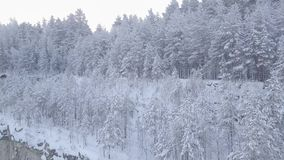 Snow-covered quarry in the woods. The woods in the snow. Bird`s eye view stock video
