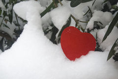Snow-covered red heart. Red heart and white snow Royalty Free Stock Photography
