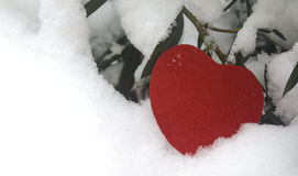 Snow-covered red heart. Red heart and white snow, lonely hearts in the winter cold Royalty Free Stock Photography