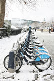 Snow covered rental bicycles Stock Photos
