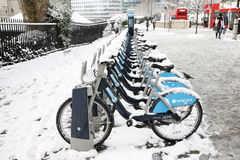 Snow covered rental bicycles Stock Image