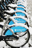 Snow covered rental bicycles Stock Images