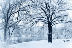 Snow-covered river Royalty Free Stock Image