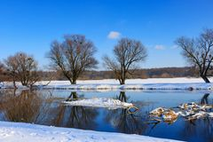 Snow-covered river bank on a sunny winter evening Royalty Free Stock Photo