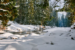 Snow covered river Stock Image