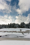 A snow covered river, trees and clouds. Snow covered trees, a lake with white patchy cloud in winter stock images