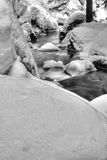 Snow covered riverbank Stock Photography