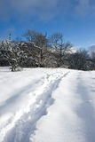 Snow-covered road Royalty Free Stock Photos